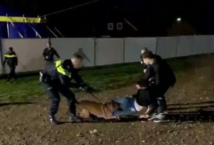 Politiehond hangt aan feestganger na afloop van het Feest van de Lange Nacht in Moergestel