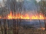Rietveld in brand aan Piet van Bokhovenpad in Helmond