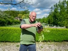 Tuinieren in potten: zo doe je dat!