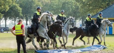 Een politiepaard word je niet zomaar
