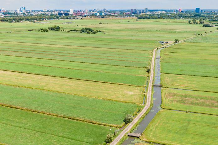 De polder Rijnenburg is nu nog een open weidelandschap.