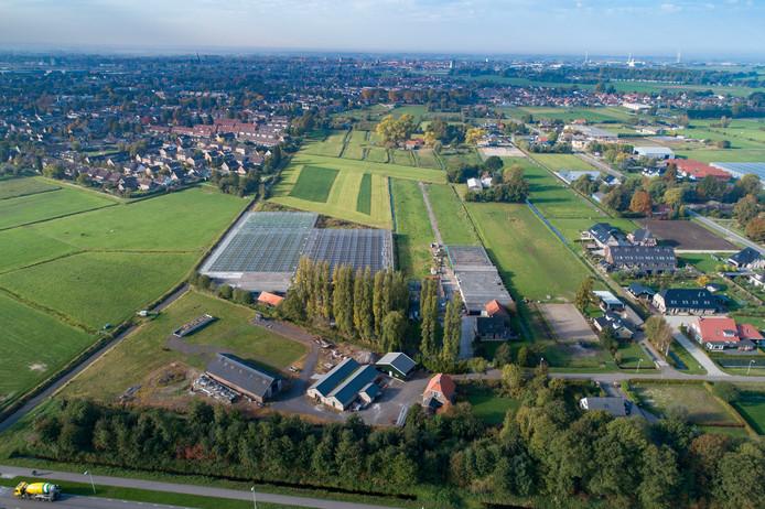 Waar nu nog de kassen van Bas en René Otten en de veehouderij van Van Pijkeren staan zou het wijkje Tussenland moeten komen.