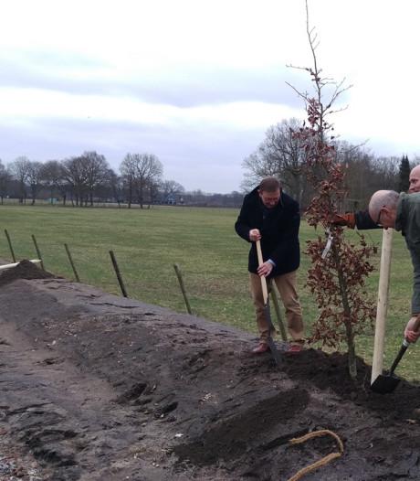 Bomen in buitengebied Putten om dierenroute te versterken