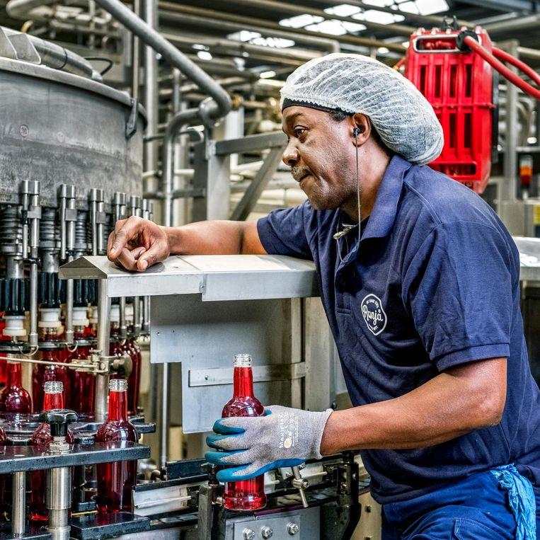 Een medewerker in de siroopfabriek in Ter Aar. Beeld Raymond Rutting / de Volkskrant