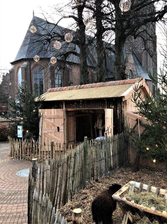 In Minderhout hadden ze dit jaar een mooie kerststal die ze zelf gemaakt hebben.