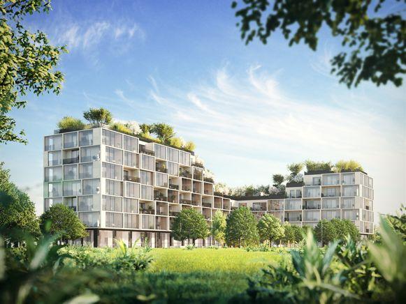 Het toekomstige Palazzo Verde op Nieuw Zuid.