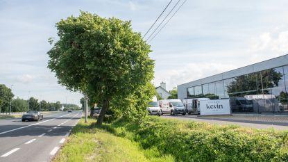 West-Vlaamse Kevin Shoes opent 1.000 vierkante meter grote winkel langs de N60 in Gavere