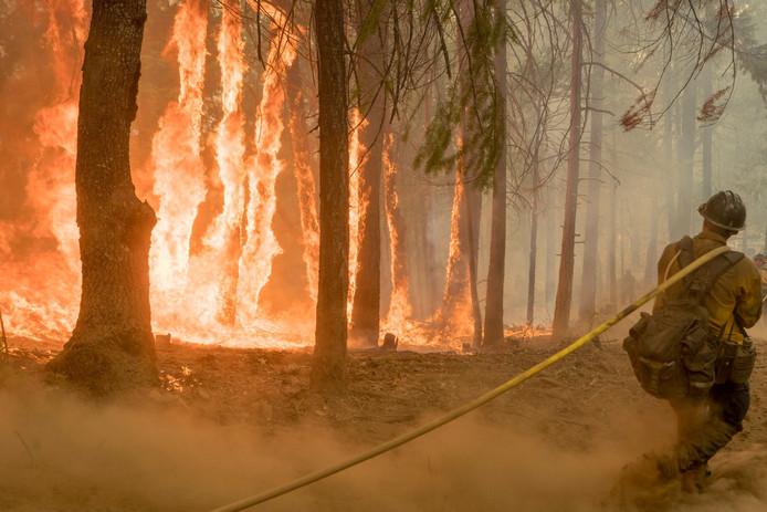 De natuurbranden in Yosemite kostten twee brandweerlieden het leven.