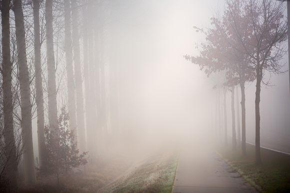 Mist in Limburg  Schulense baan Lummen