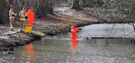 Visdraad en dode eend brengen gans in de problemen; reddingsactie brandweer duurt lang