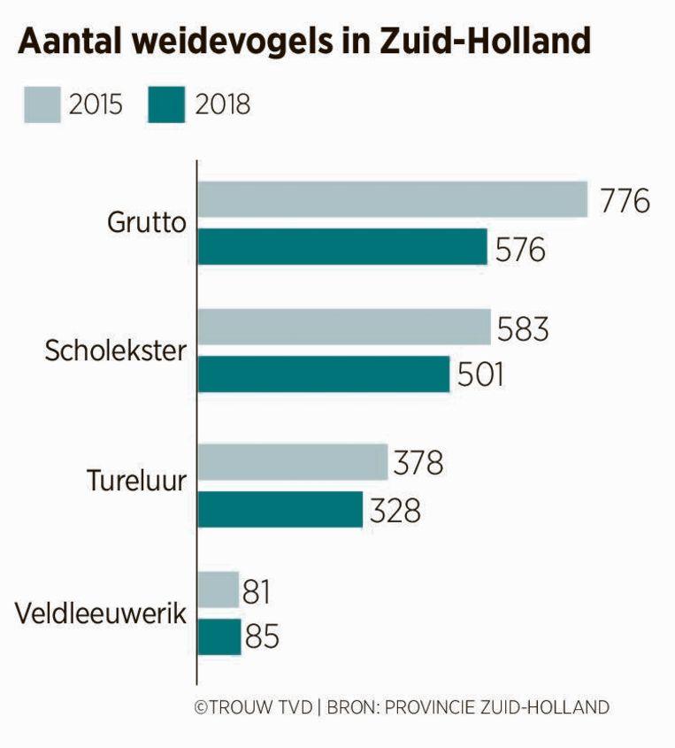 Aantal weidevogels in Zuid-Holland Beeld Provincie Zuid-Holland
