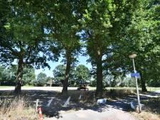 Buurt protesteert tegen tracé ontsluitingsweg in De Lutte