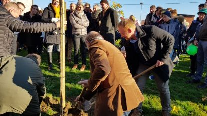 Gezinsbond Dentergem organiseert boomplantactie