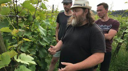 Optimisme bij wijnboer na rampjaar 2017