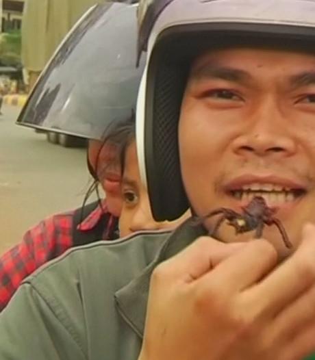 Cambodjanen genieten van angstaanjagende snack