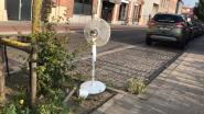 VIDEO. Is dit de koelste parkeerplaats van het land?