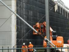 Ree en edelhert huppelen straks boven stoptrein Boxtel-Best naar Heerenbeek
