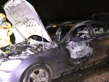 Auto vliegt spontaan in brand op dijk bij Terwolde, chauffeur komt met schrik vrij