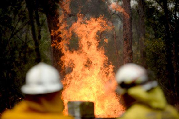Het vuur grijpt om zich heen op Gospers Mountain.