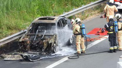VIDEO. Wagen in lichterlaaie op E40 in Beernem: bestuurder blijft ongedeerd
