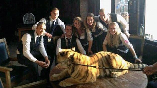 De Studenten vergapen zich aaneen van de tijgers.