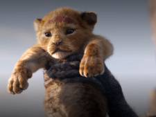 Max Verstappen en Lion King bepalen dierennamen: Max en Simba populairst
