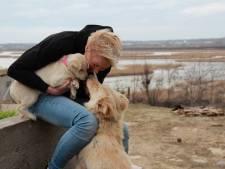 Monique Dubbeldam verhuisde naar Roemenië om meer voor zwerfhonden te kunnen betekenen