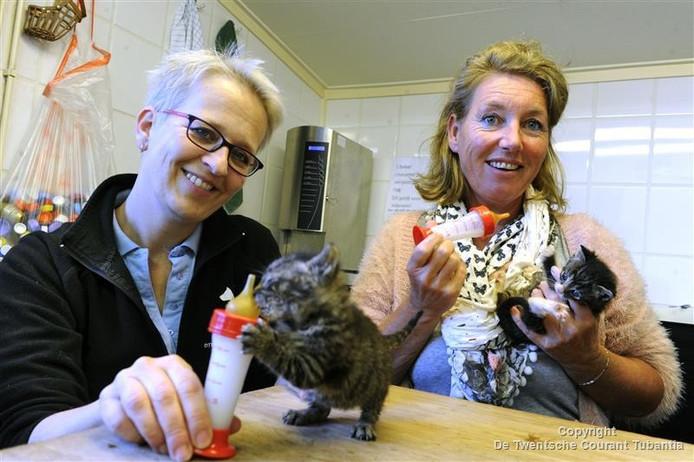 Debby Kok en Liesbeth van Hoorik voeden twee 6 weken oude kittens.