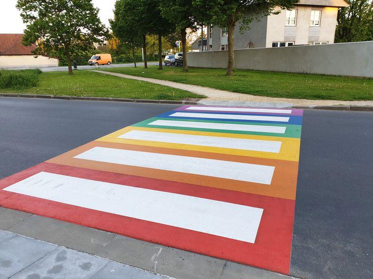 Het regenboogzebrapad in de Leeuwerikenlaan in Denderleeuw.