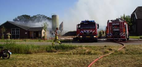 Duizenden kippen komen om door uitslaande schuurbrand in Beltrum