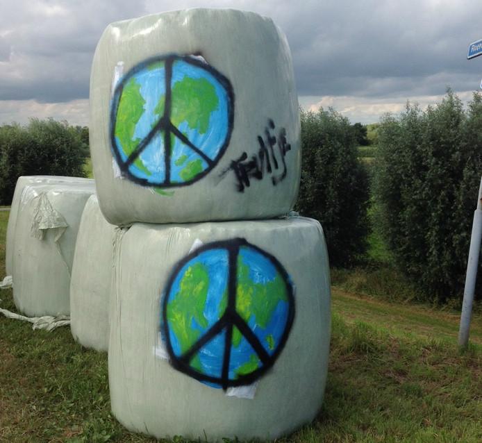 Een anonieme kunstenaar heeft de hakenkruizen omgetoverd tot wereldbollen.