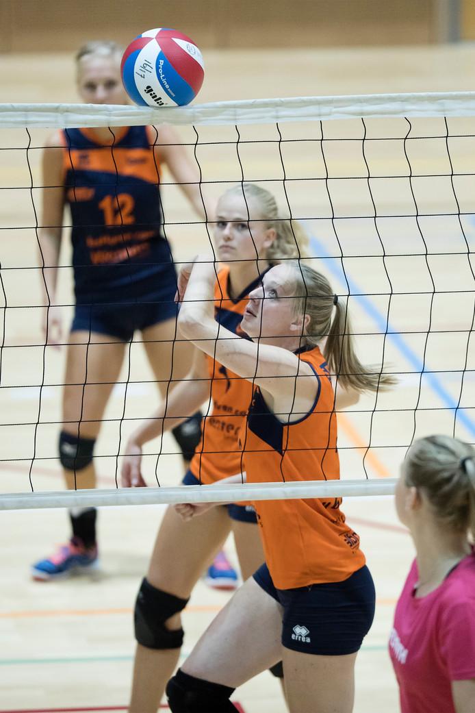 De volleybalsters van Orion boekten zaterdag een knappe overwinning. Archieffoto