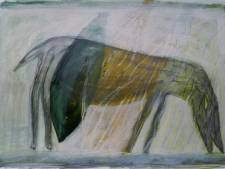 Paul Dirks exposeert in Oude Raadhuis in Beek en Donk