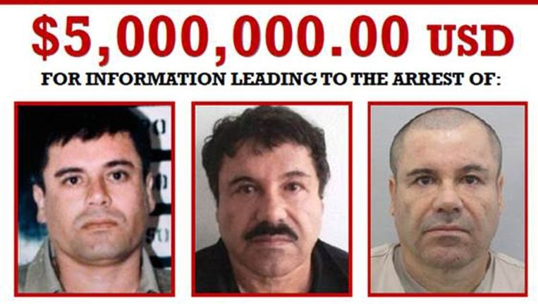 Een poster met drie foto's van El Chapo. De gouden tip die naar de drugsbaas leidt, kan 5 miljoen dollar opleveren. Beeld AFP PHOTO /DEA/HO
