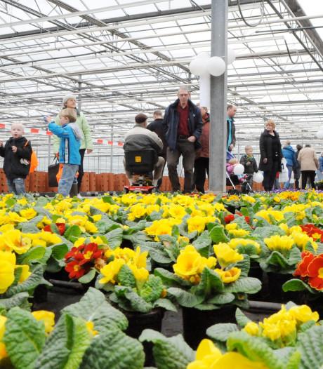 Siertelers exporteren voor 6 miljard euro aan bloemen en planten