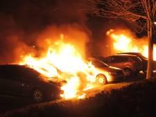 Wie zijn die idioten die auto's in brand steken?
