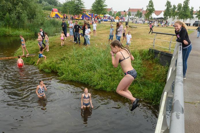 BORNE - 20180602 - Beekparkfestival in Bornsche Maten. Editie: HE Foto Christian van der Meij TT20180602