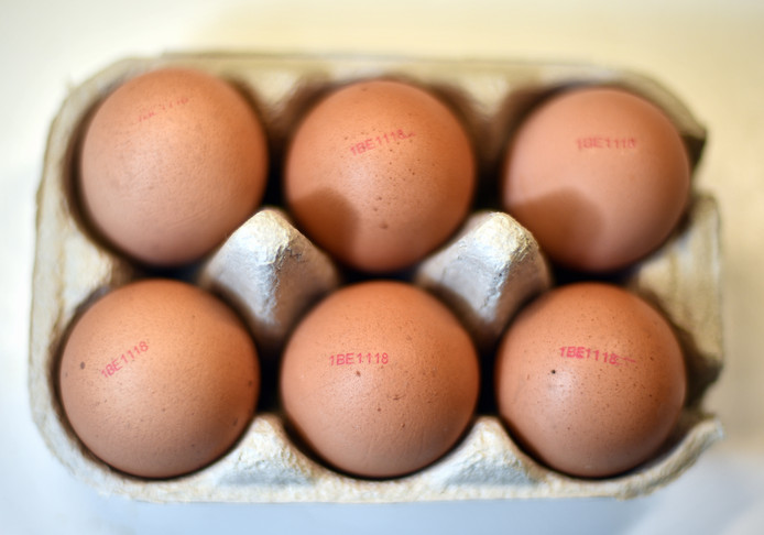 Illustration shows eggs in a kitchen, Tuesday 08 August 2017. Millions of eggs have been pulled from shops in Belgium, the Netherlands and Germany as fipronil was detected in samples. Insecticide fipronil is used to destroy lice and ticks, but it's forbidden for use with animals intended for human consumption. BELGA PHOTO ERIC LALMAND