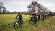 25ste Sportfeesten in Puivelde: drie dagen sport en plezier