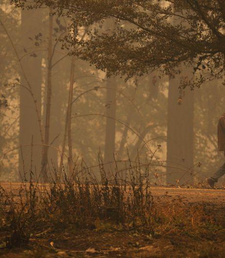 13-jarige jongen dood gevonden met hond op schoot na verwoestende bosbrand VS
