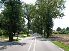 GroenLinks: proef met lagere snelheid N348 bij Eefde