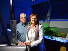 EcoRacks in Eindhoven wil groen en aaibaar datacenter zijn
