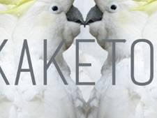 Voetjes in het zand bij RAW: nieuw feest Kaketoe 'voor de zomerse thuisblijvers'