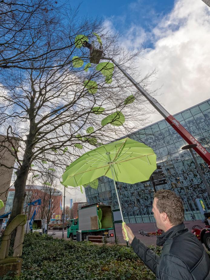 In de monumentale beuk tegenover het Stadhuis werden paraplu's gehangen, om inwoners op te roepen hun mening te geven over het bomenbeleid. Archieffoto