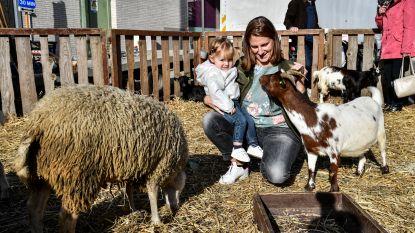 Kinderen ontdekken dieren op jaarmarkt