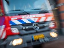 Kalfjes uit put getakeld door brandweer in Barneveld