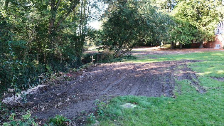 Het gazon en boomwortels zijn beschadigd, volgens de stad.