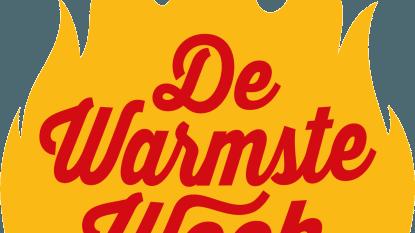 Houten kerstfiguren voor 'De Warmste Week'