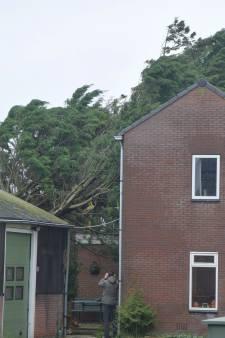 De gevolgen van een stormachtig weekend in Groene Hart: aantal meldingen lijkt mee te vallen
