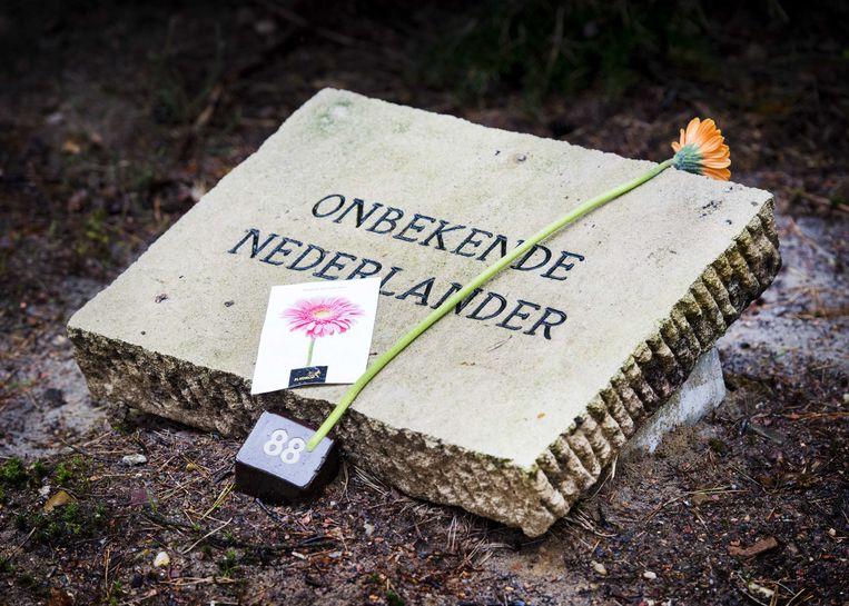 Van de 4000 graven op het Nationaal Ereveld in Loenen dragen er 103 geen naam, er liggen onbekende oorlogsslachtoffers.  Via DNA-verwantschapsonderzoek wordt nu geprobeerd hun identiteit alsnog te achterhalen. Beeld ANP